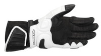 Gp_plus_glove_blk_white_palm-1