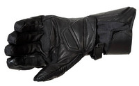 Tsw_glove_blk_rear