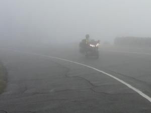 Dave_fog