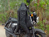 Leather_jacket_canyon